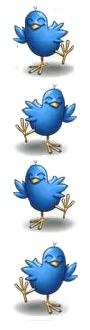 Twitter birds engaging